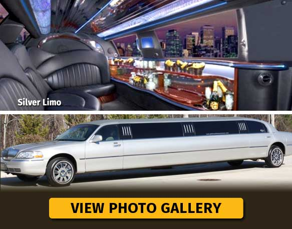 Silver Stretch Limo